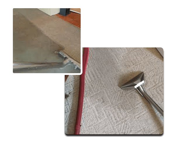 Same Day Carpet Cleaning Service Downer